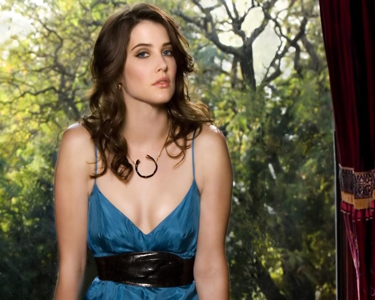panties Leaked Cobie Smulders naked photo 2017