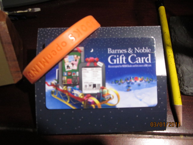 Susan Kaye Quinn, Young Adult Author: Holiday Gift Card Giveaway!