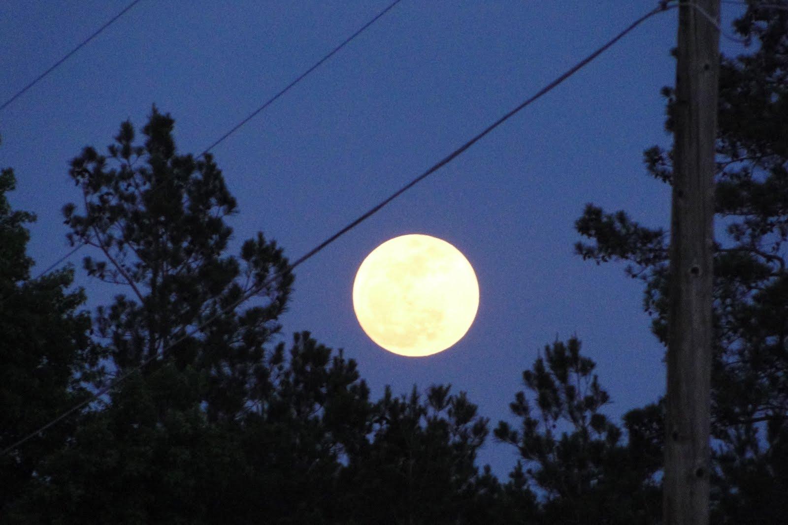 http://4.bp.blogspot.com/-EqWv3TAAUXM/T6XrrM-Y1hI/AAAAAAAALXM/UiIawNbrRAo/s1600/05may2012_super_moon_20-09-10.JPG