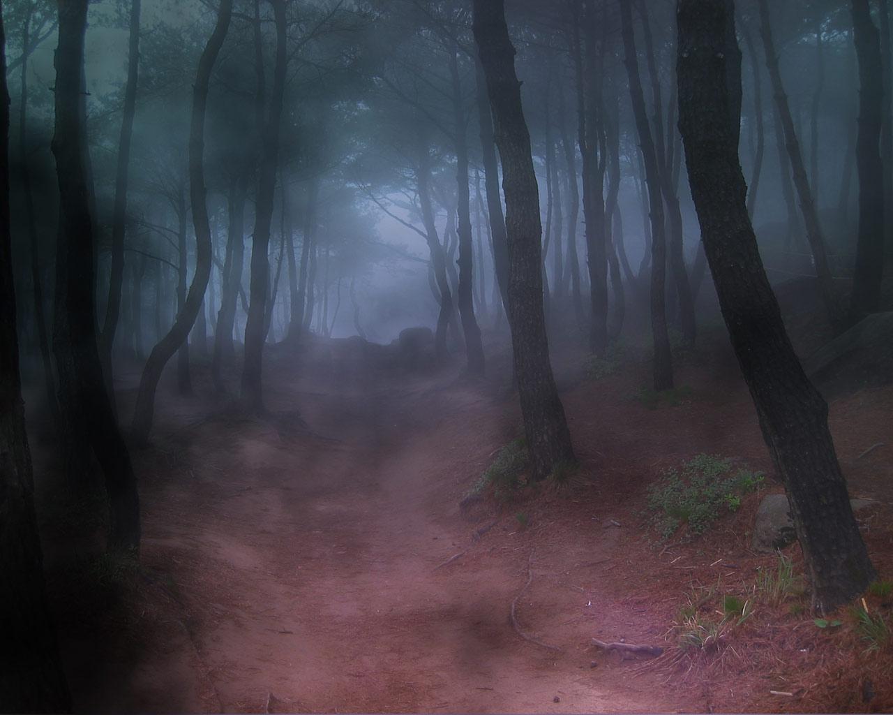 http://4.bp.blogspot.com/-EqYvTHKl-_Q/TrJM8IDI92I/AAAAAAAACcU/CrJnsrJo5sk/s1600/Forest-Fog-Bryce-5.5-1-LJRUK1GIQE-1280x1024.jpg