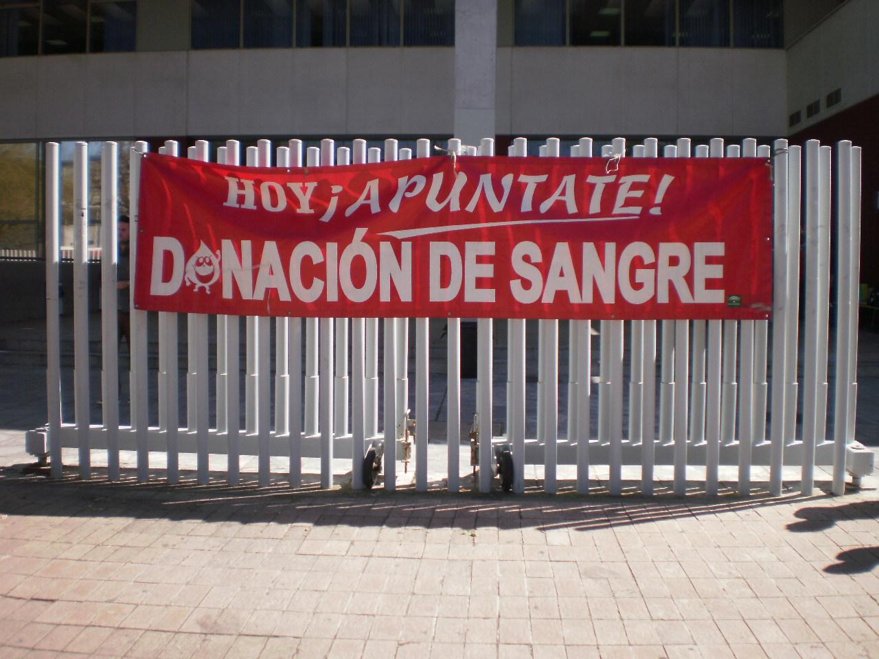 Eventos en sevilla hazte donante de sangre for Espectaculos en sevilla hoy