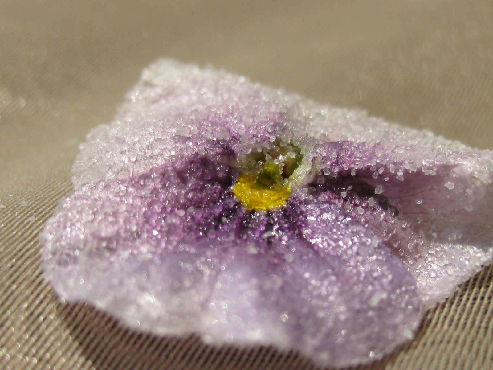 How to Crystallize Flowers picture