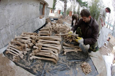 Crimean War cemetery uncovered in Ukraine
