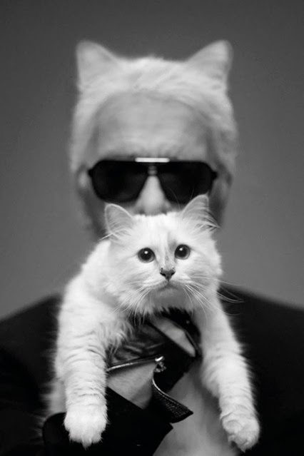 KARL LAGERFELD  CHOUPETTE ACCESORIES COLLECTION