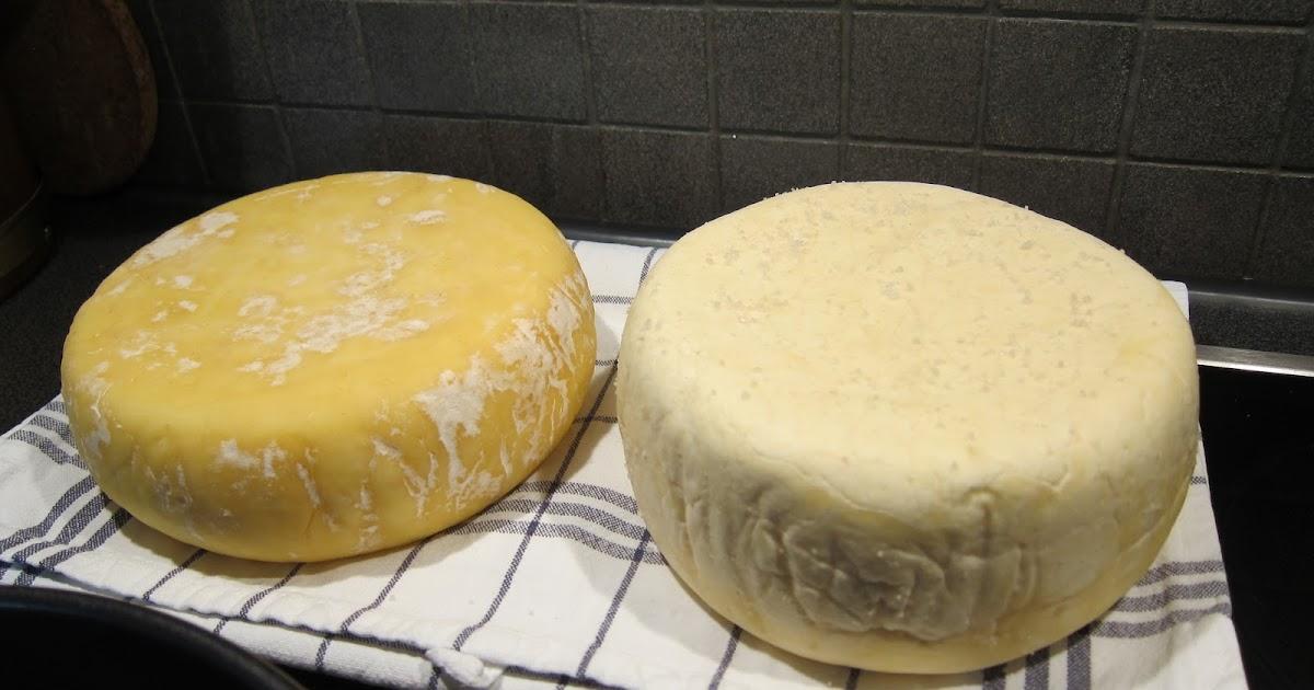 göra ost med ostlöpe