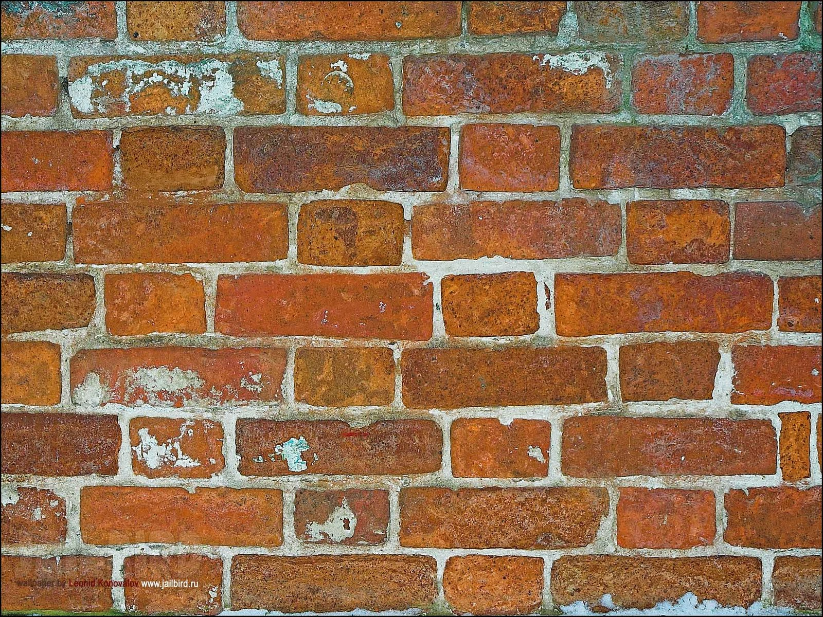 http://4.bp.blogspot.com/-Er1Nx82Vp5Y/TscZHMFecrI/AAAAAAAAA6U/2BTbGdACUBI/s1600/brick-wallpaper-hd-7-739961.jpg