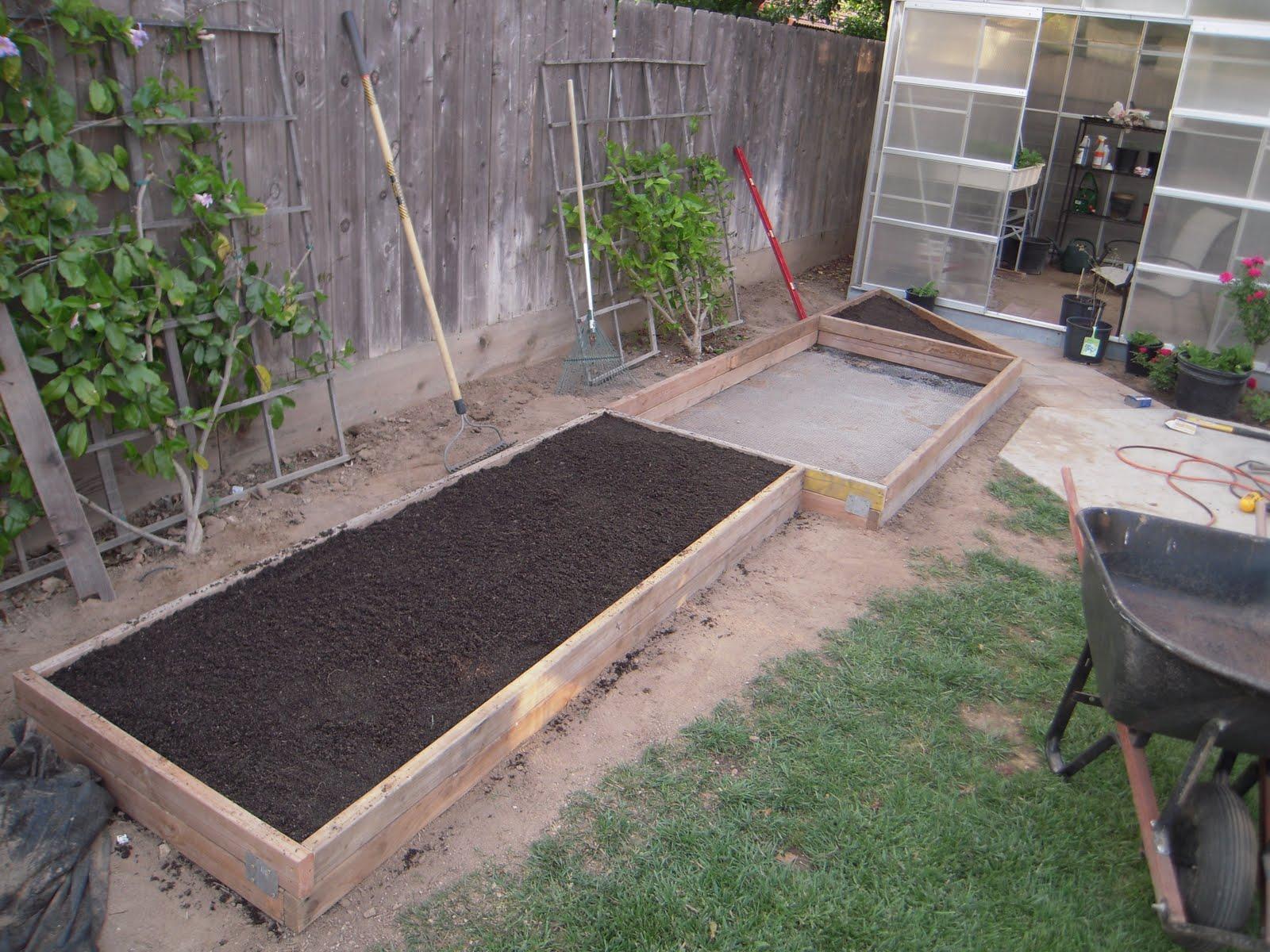 gopher proofing your garden