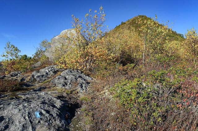 dramatic scenery along the semi-open ridge of Mt. Negus