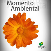 Momento Ambiental