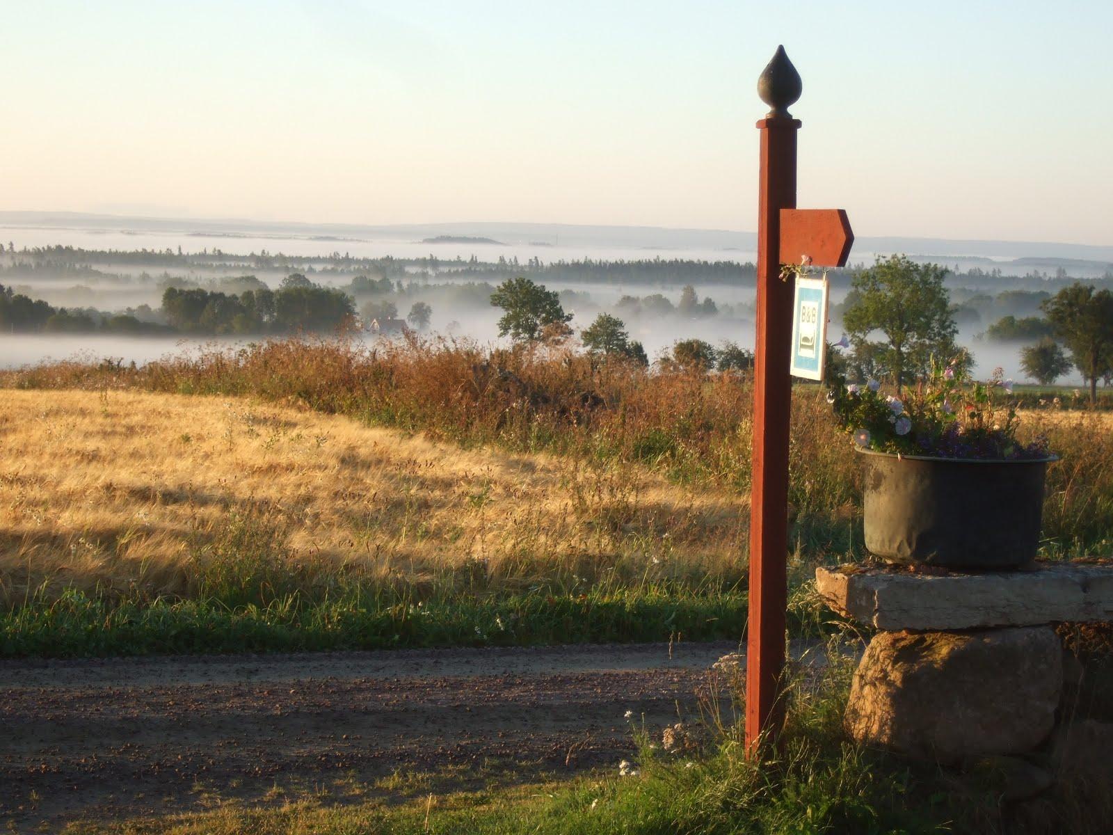 Utsikten från gården.