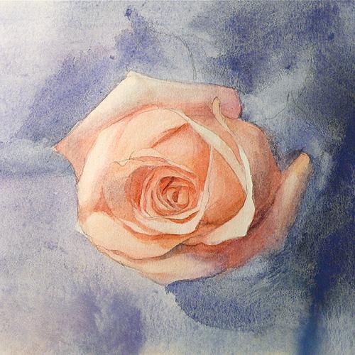 Painting Basics Watercolor Demo A Pink Rose