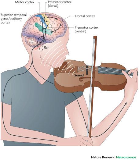 Pengaruh musik