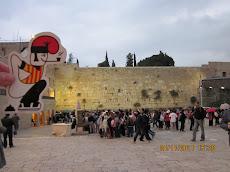 El catganer arriba al mur de les lamentacions.