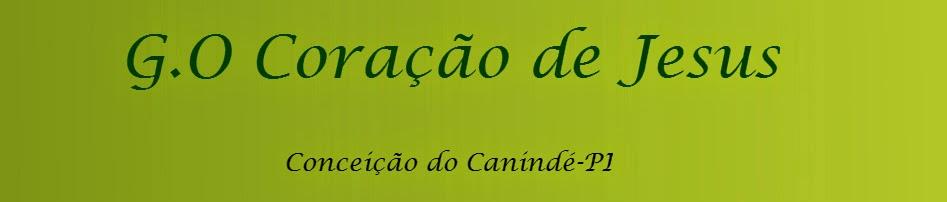 Grupo de Oração Coração de Jesus - Conceição do Canindé-PI