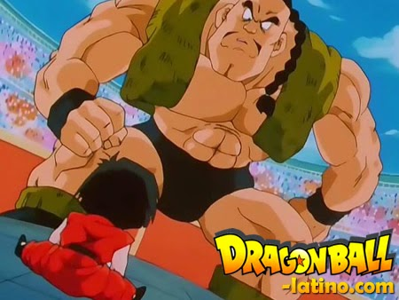 Dragon Ball Z capitulo 290