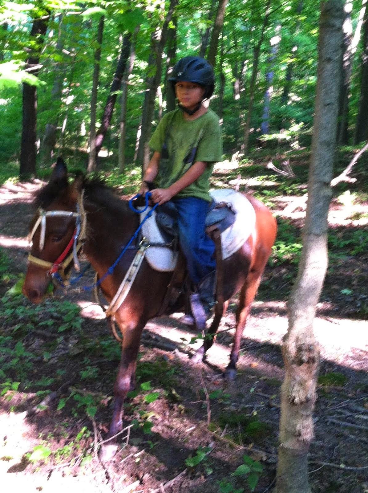 Angelo Terry & Bulls-eye his pony mule