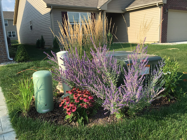 utility box landscaping