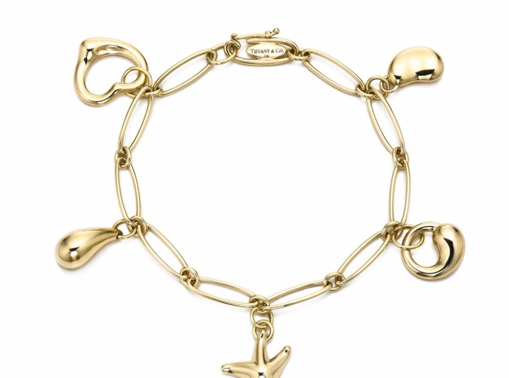 Niwdenapolis Charm Bracelet History On Your Wrist