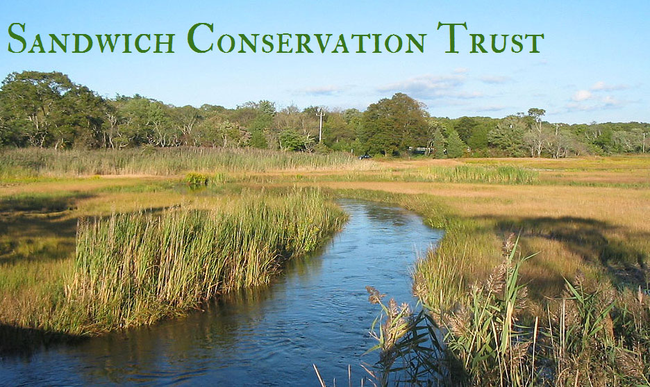 Sandwich Conservation Trust