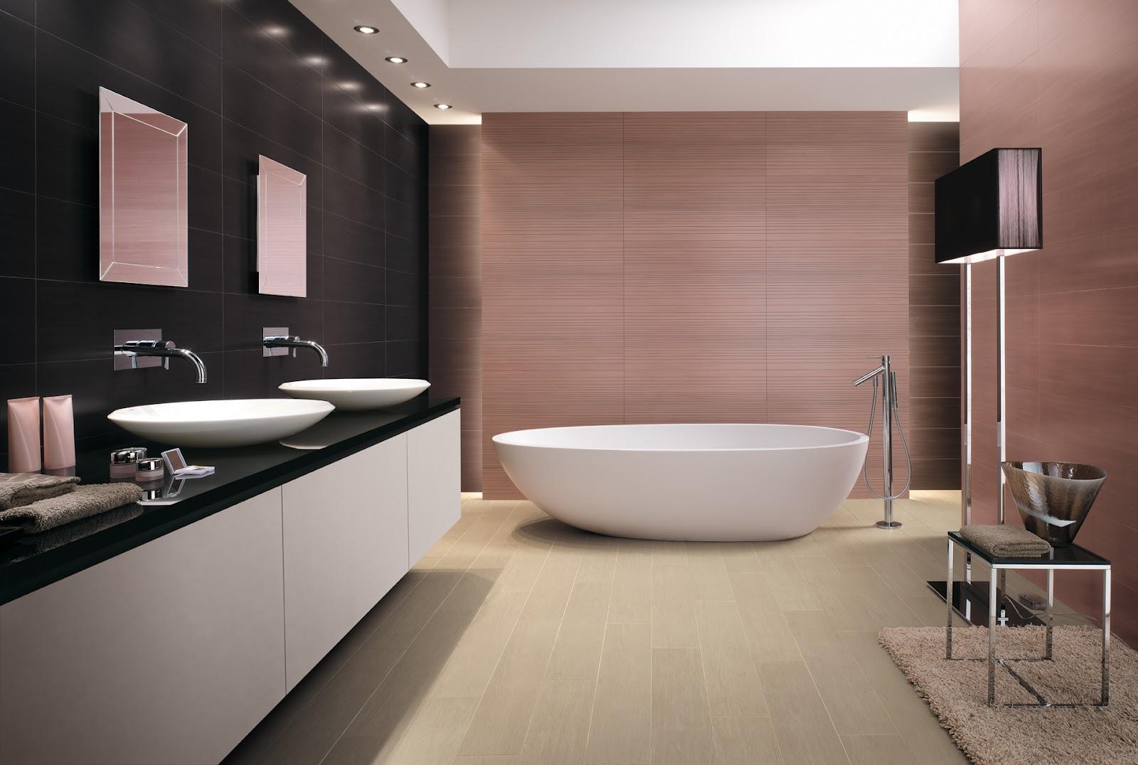 Baño En Ducha Asistido:Pero ¿Qué ha pasado con las bañeras?, ¿Por qué han cedido ese