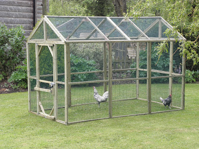 Hens trying our a protection pen