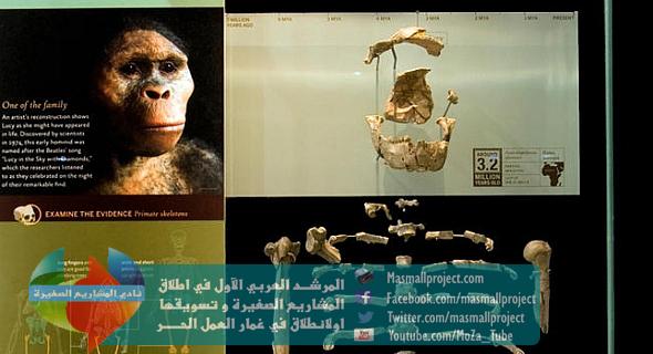 بدنقنيش-أول-انسانة-اثيوبية-من-هي-المستحاثة-لوسي؟-24-11-2015