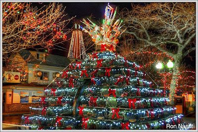 photo - Exclusive Ron Nasuti Pix Lobster Pot Tree 2013 Provincetown