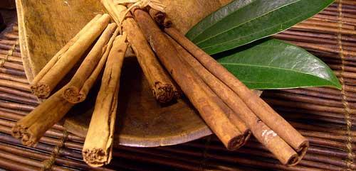 antioksidan kayu manis