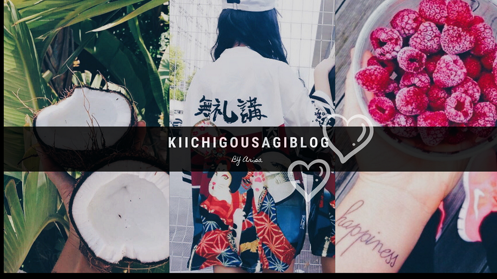 KIICHIGOUSAGI.BLOG