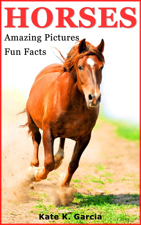 Amazon Best Sellers: Best Equestrian & Horse Racing