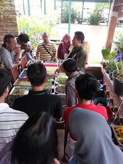 Pelatihan Hidroponik oleh Mas Sapto Jogja