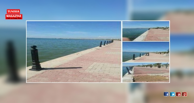 سرقة سلاسل الحماية في ضفاف البحيرة!
