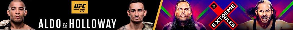 Ver UFC Fight Night 109: Gustafsson vs Teixeira en Español HD   Sport Online HD