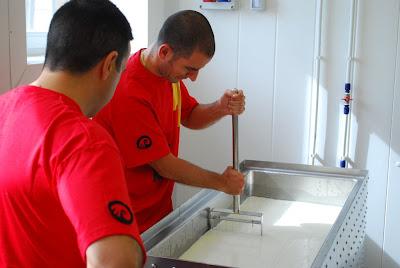 Oscar y Abel de Santceloni haciendo sus quesos artesanos en Cantagrullas. Blog Esteban Capdevila