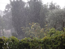 primo settembre primo temporale!