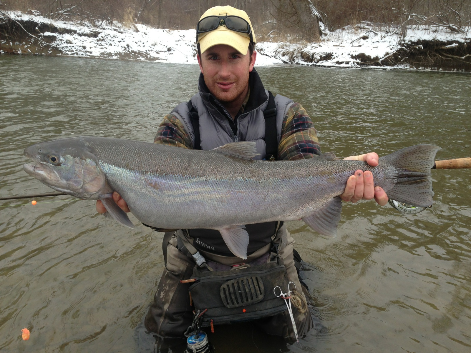 Lake metroparks fishing report after a good week the for Steelhead fishing ohio