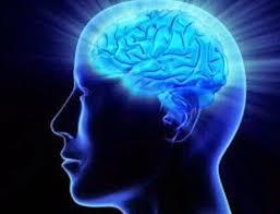 Berpengaruh Terhadap Perkembangan Otak.