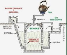 Biodigestores y energiaalternativaparaurantia