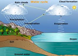 Global warming effectsclimate changestop global warming water cycle tuesday february 22 2011 ccuart Image collections