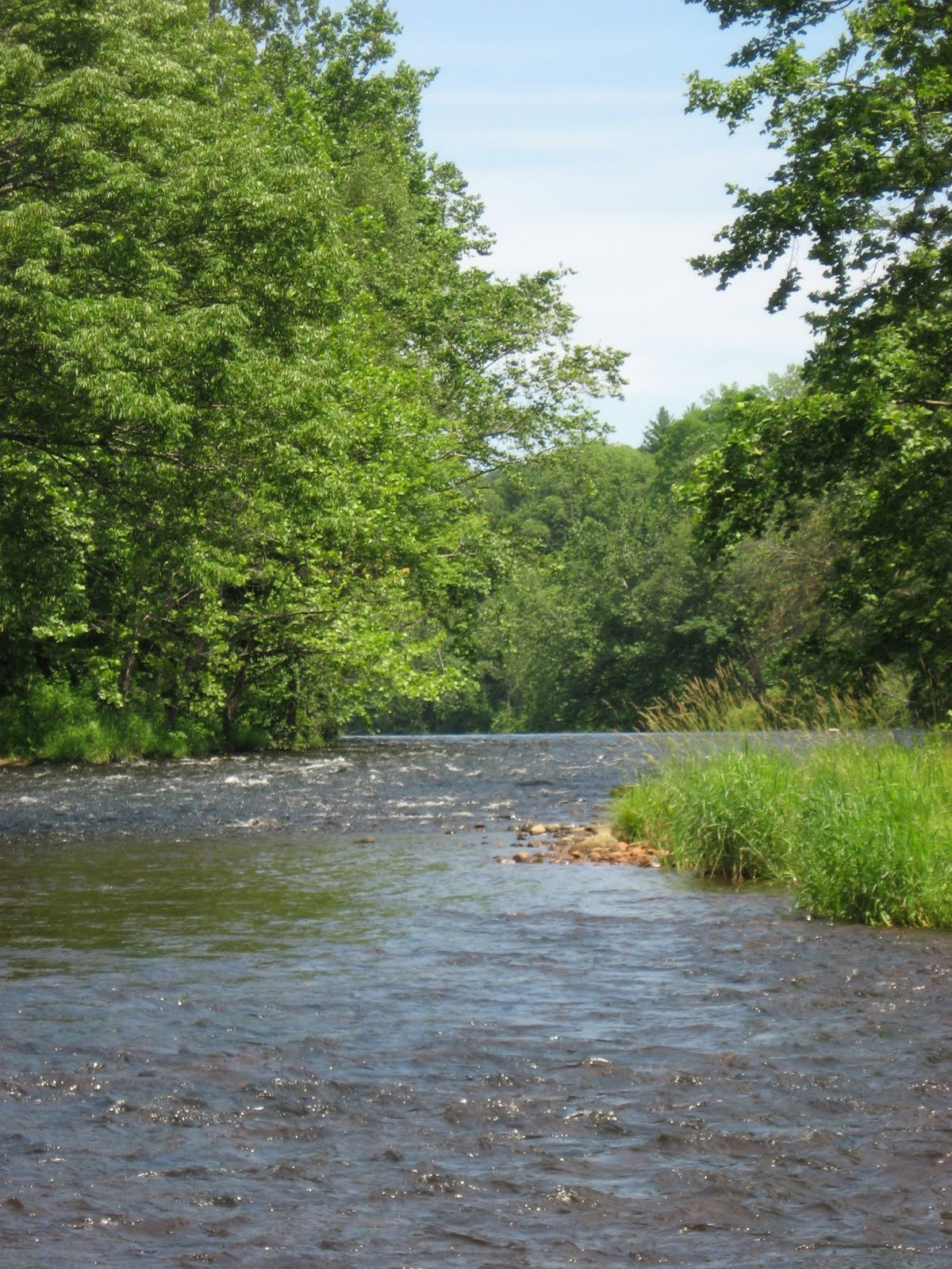 Fly fishing tails red white and blue 4th of july for Farmington river fishing
