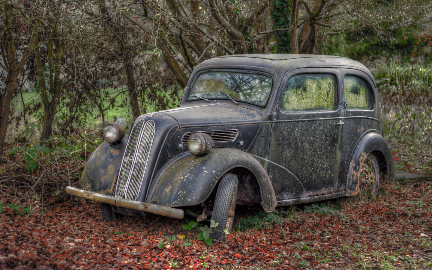 Comfortable Old Cars In Fields Pictures Inspiration - Classic Cars ...