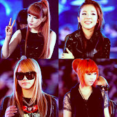 2NE1 (투애니원) ♥