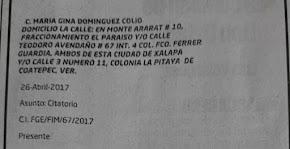FISCALÍA GENERAL DEL ESTADO SÍ INVESTIGA A LA EX VOCERA DE DUARTE, GINA DOMÍNGUEZ