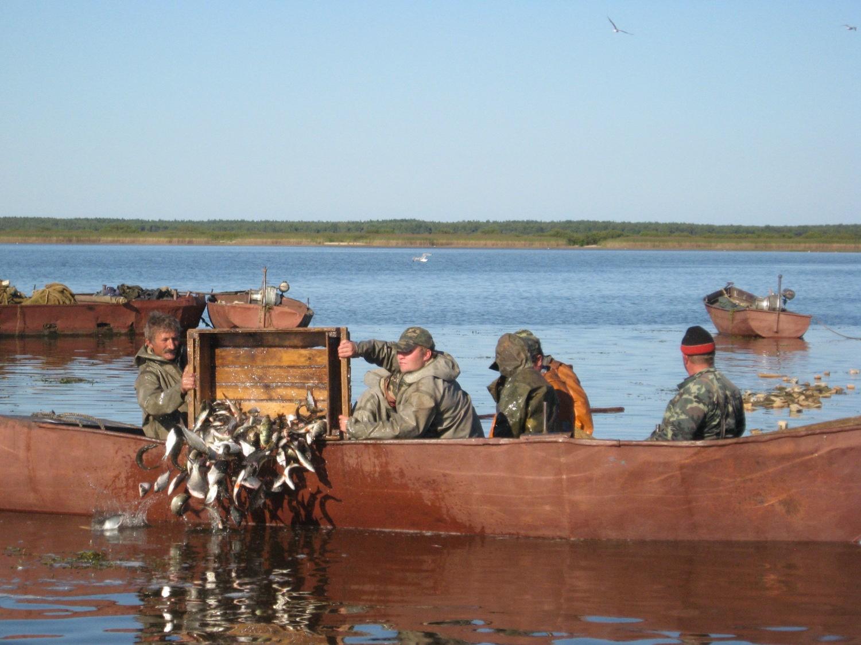 рыбалка на кубенском озере форум 2017