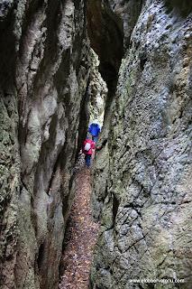 Cuevas de Andina