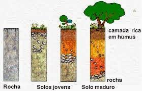 O processo de formação dos solos