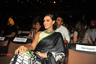 Neha Dhupia Pictures in Black Saree at Punjabi Icon Awards 2013 ~ Celebs Next