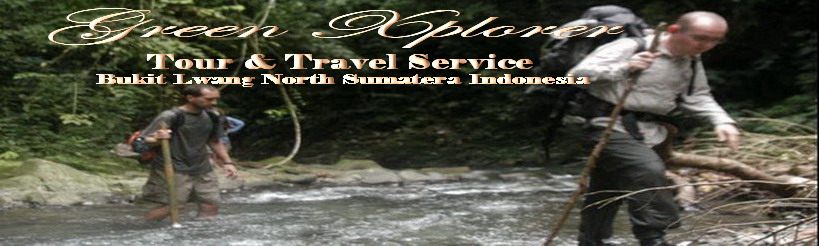 Surprising Bukit Lawang Jungle l North Sumatera - Indonesia
