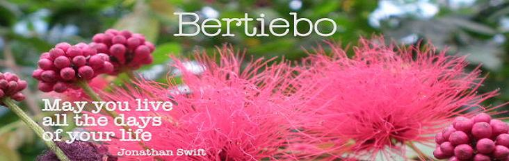 Bertiebo