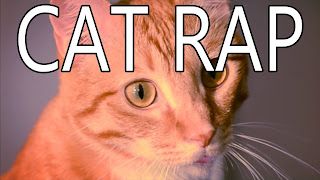 funny cat picture cat rapper wannabe